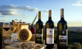 hotel-spa-castello-di-velona-montalcino-our-wines-01